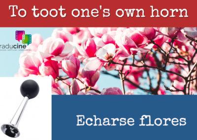 Traducine - Echarse flores
