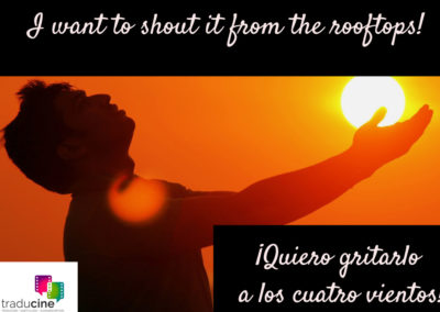 Traducine - Shout it from the rooftops