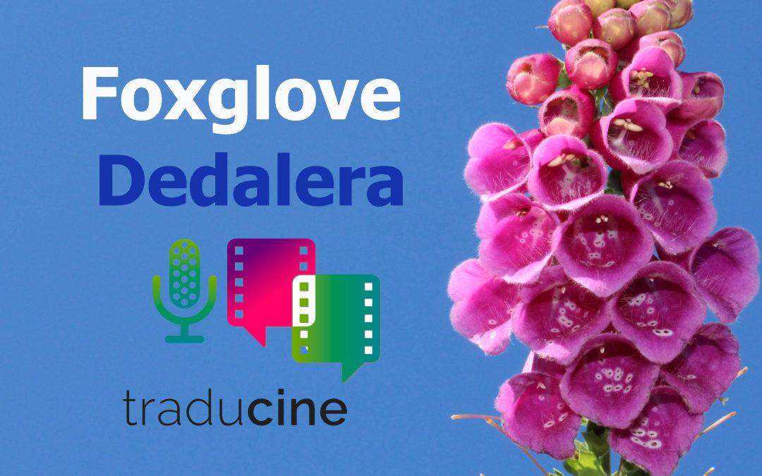 Foxglove – Dedalera